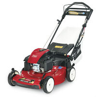 Lawn Mower / Personal Pace Electric Start (20374)
