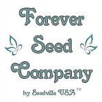 seedsforbrains
