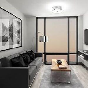 ICON 2/2 Rms (BOND) Spring/Summer 4 Mth Sublet (May-Aug 2017)
