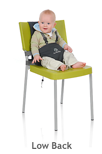 Bambinoz Portable Highchair Booster Seat Cloverdale Belmont Area Preview