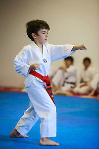 Free Trial  Class at Five Rings Tae Kwon Do Kitchener / Waterloo Kitchener Area image 4