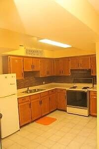 $850 1 bedroom basement apartment for rent (Dufferin/Centre)