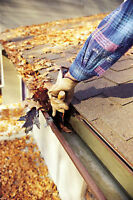 FALL CLEAN UP, EAVE TROUGHS, LEAF RAKING, SNOW REMOVAL