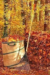 Fall Clean-ups by Local Property Care Co. Peterborough Peterborough Area image 5