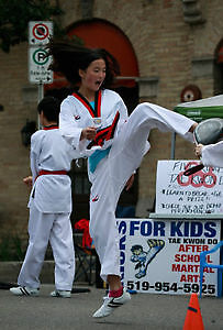 Free Trial  Class at Five Rings Tae Kwon Do Kitchener / Waterloo Kitchener Area image 6