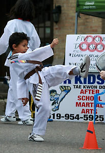 Free Trial  Class at Five Rings Tae Kwon Do Kitchener / Waterloo Kitchener Area image 2