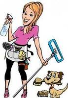 Cleaning for your home & cottage & business