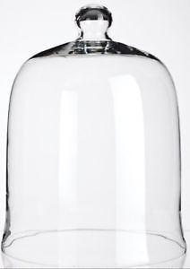 Glass Cloche Ebay