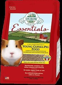 Oxbow Essentials Young Guinea pig food.
