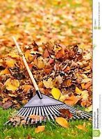 FALL CLEANUP & MAINTENANCE