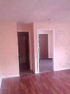 Huge size 2 Beds with new laminate floor on Kent st