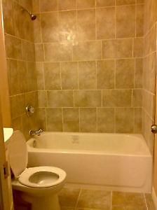 BRAND NEW BASEMENT SUITE NEVER LIVED IN Kitchener / Waterloo Kitchener Area image 1