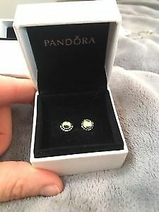 Brand New Pandora Earrings