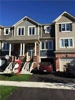 Executive Large 3 brm 3wsh TownHouse in Brampton For Lease