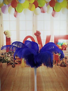 Ostrich Feather for DIY Centerpieces