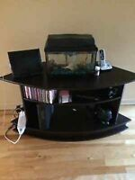 Stand with Aquarium with lamp with Fish inside
