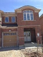 New 3 Bedroom 3 Bath With Basement Finished Whole Home Rent