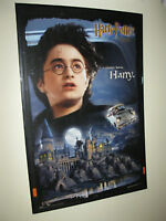 Harry Potter and the Chamber of Secrets Poster (Framed)