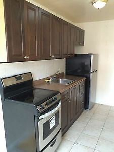 Completely renovated large bachelor superb location  Sept 01