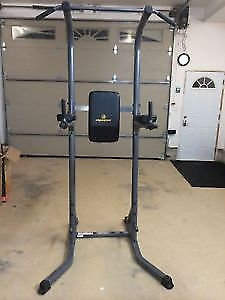 Apex Power Tower Chin UP VKR Knee Raise Dips Push Sit Up