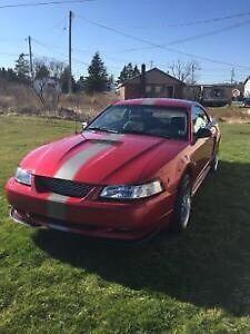 1999 Mustang GT - Excellent Shape
