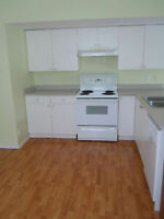 1000 sqf 2 bedroom suite for rent in PG