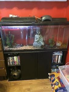 55 gallon tank with accessories