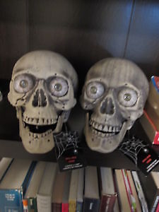 New LED Scull heads, never used