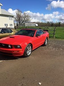 2007 Ford Mustang GT Convertible** NEW PRICE**