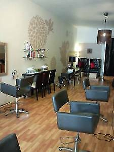 Northern Beaches Hair and Beauty Salon for sale