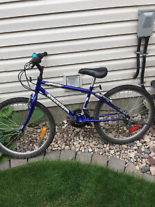 """Raleigh Tracker 15-speed bicycle - 24"""" Tires"""