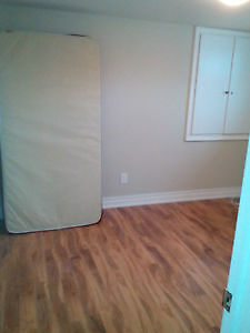 Bright & Clean 1 RoomBasement, 5 Minutes 2 ScarboroughTownCenter