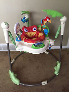 Rainforest Jumperoo in good shape(Non-Smoking Home)