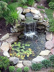 Pond cleaning and service