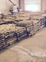 SKIDS  / PALLETS FRO SALE