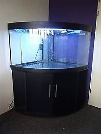 jewel trigon 350 fish tank