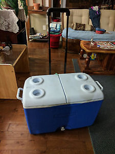 Lightly used double door cooler with handle, good condition.