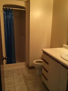 student apt with walking distance to UW to rent from Jan to Apri Kitchener / Waterloo Kitchener Area image 3