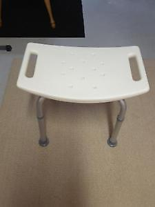 shower seat and raised toilet seat