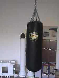 Pro punching bag with chains