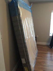 Queen Box Spring  (moving sale)