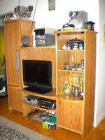 Urgent !meuble biblothèque couleur naturel, doit partir....