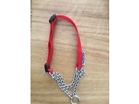 Do g collar brand new in Red