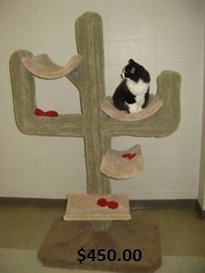 cat posts, cat furniture, scratching posts, cat trees
