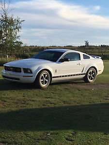 2006 Ford Mustang - Special Edition