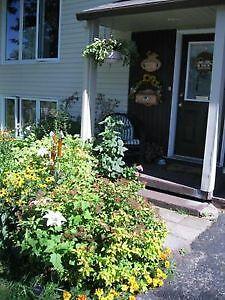 Jolie maison champêtre à 5 min du CHUS Fleurimont