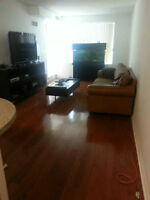 Move in/out, Post Renovation, Deep Cleaning Services low price