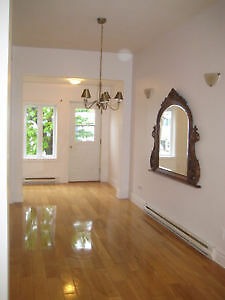 URGENT griffintown adj, p st charles,canal,Atwater,MONTREAL LOFT
