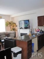YORK UNIVERSITY VILLAGE- MOVE IN NOW /SUMMER /SEPT-/ALL Inclus