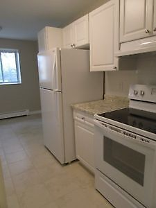 Renovated 2 Bedroom All Inclusive!
